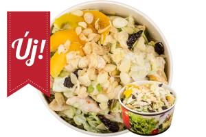 Téli Álom saláta